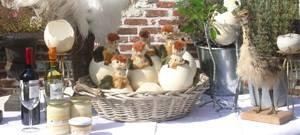Struisvogelproducten