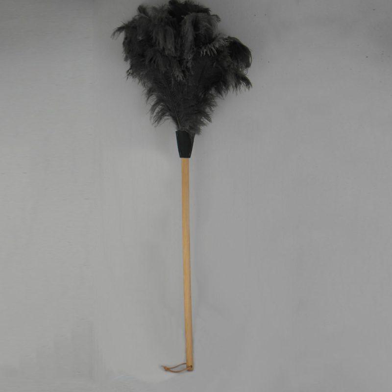 Struisvogel plumeau - lange houten steel