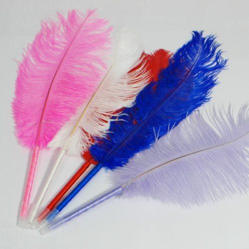 Struisvogelbalpennen met struisvogelveren