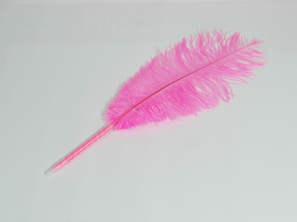 Struisvogelbalpen met roze struisvogelveer