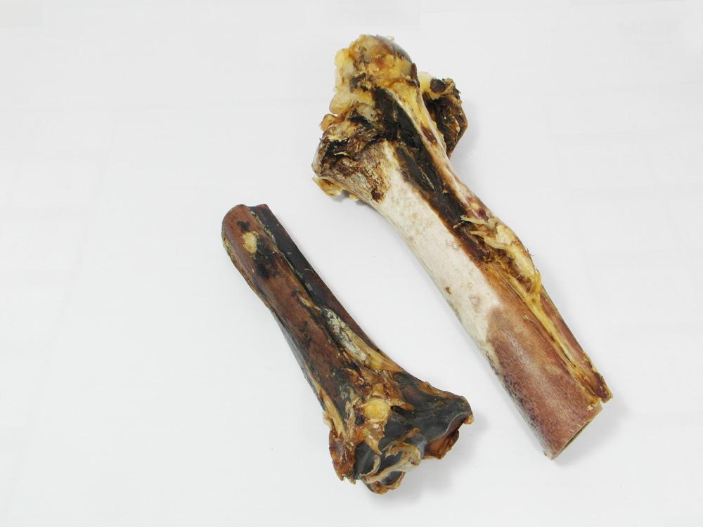 Struisvogelbot Tibia - Hondenvoeding