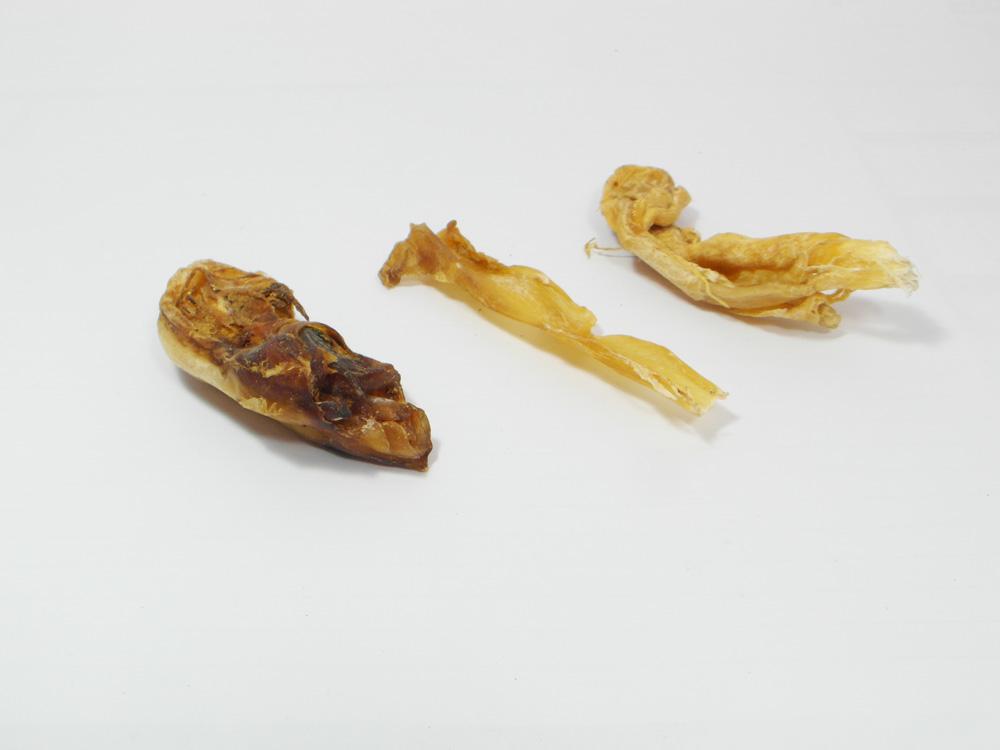 Platte-pezen van een struisvogel - Hondensnack